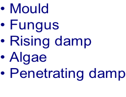 • Mould  • Fungus  • Rising damp  • Algae • Penetrating damp